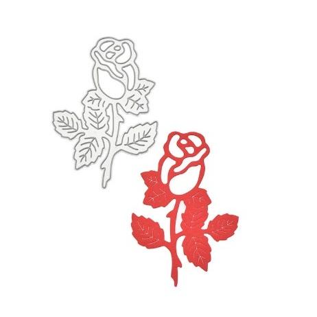 Boton de Rosa