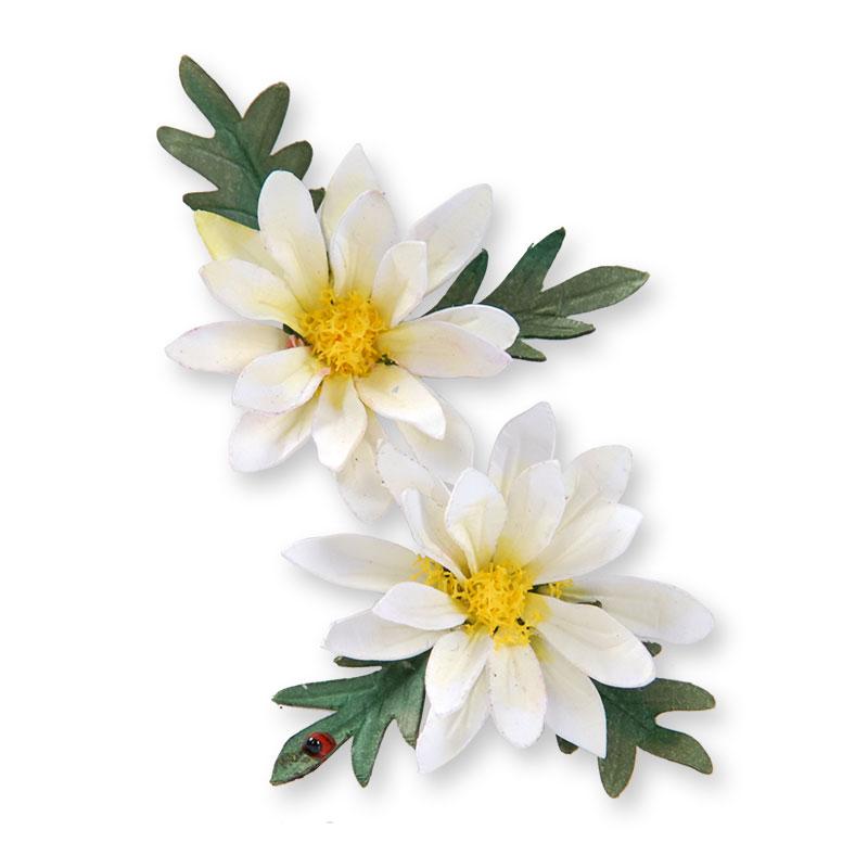 Thinlits Daisyes